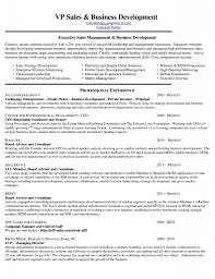 Business Development Manager Resume Sample Resume For Business Development Executive Manager 50