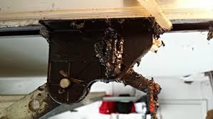 how to prevent garage door grease