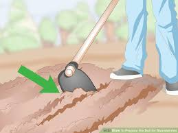 image titled prepare the soil for strawberries step 3