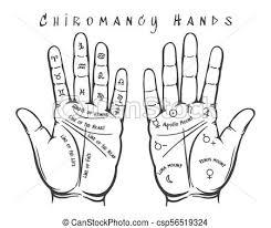 Chiromancy Hands Illustration