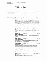 Lead Carpenter Resume Resume Work Template