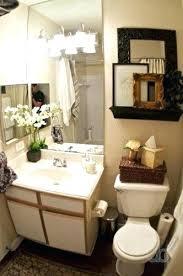 Apartment Bathroom Designs Interesting Decorating