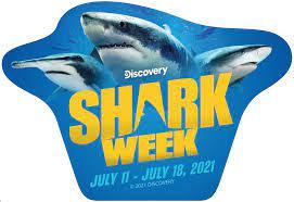 """Shark Week 2021 - 2.75"""" x 4"""" Die-Cut ..."""