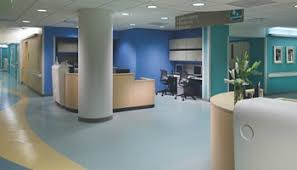 office flooring options. Commercial Floor Options Office Flooring