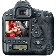 Image result for The best DSLR cameras for beginners Photography
