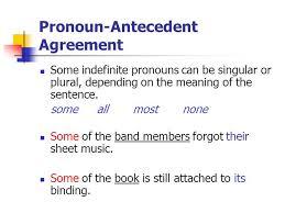 Pronoun Antecedent Agreement Essential Agreements Making Your Sentences Work Pronoun Antecedent