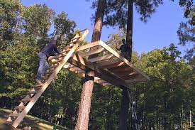 tree house plans for two trees.  Trees Treehouse4jpg And Tree House Plans For Two Trees