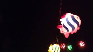 Fish Christmas Lights Fish Christmas Lights Youtube