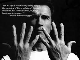 Arnold Schwarzenegger Quotes Gorgeous Arnold Schwarzenegger Quotes SocialCafe Magazine