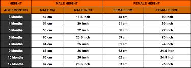Rottweiler Growth Chart Rottweiler Height Chart Rottweiler