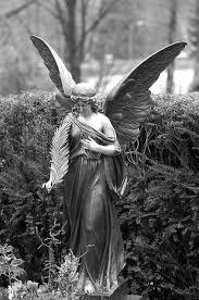 angel essays stone angel essays