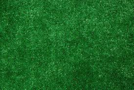 Artificial indoor grass Cheap Loading Zoom Dean Stair Treads Dean Indooroutdoor Artificial Grass Turf Area Rug 6x8