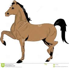 horse drawing in color. Simple Drawing Drawing Of Horse In Color With Horse In Color A