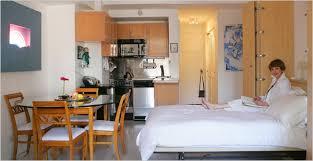 Elegant efficiency apartment decoration and furniture ideas