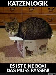 Katzen Lustige Sprüche Lustige Katzen Sprüche 2019 03 13