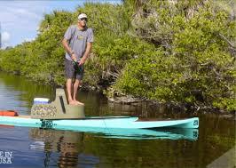 sup paddle fish