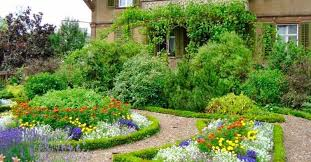 cottage garden everything you need to