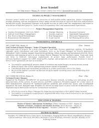 100 Resume Objective For Project Manager 100 Project
