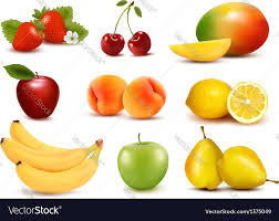 pictures of different fruit. Plain Different Big Group Of Different Fruit Vector Image On Pictures Of Different Fruit R