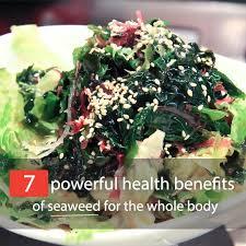 Kelp 's, nutritional, benefits