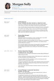 Artist Resume Samples Visualcv Resume Samples Database