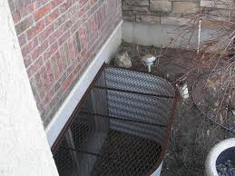 Impressive Basement Window Well Covers Home Depot Egress Cover Lowes In Concept Ideas
