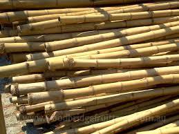 bamboo garden stakes. Bamboo Garden Stakes · O
