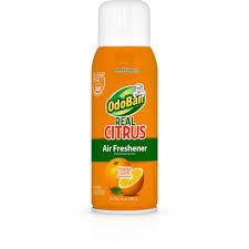 Air Freshener Spray-9793D70-10A - The Home Depot
