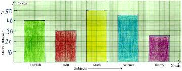Worksheet On Bar Graph Bar Graph Home Work Different