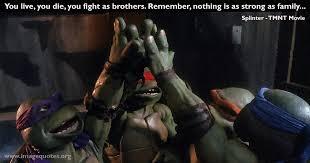Ninja Turtle Quotes Adorable Teenage Mutant Ninja Turtles Quotes Image Quotes At Hippoquotes