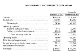 small business profit and loss statement template company financial statements template