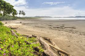 Where To Go Surfing In Nosara Costa Rica