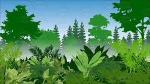 jungle background clipart. Interesting Clipart Lush Green Jungle Background In Jungle Background Clipart Vector Toons