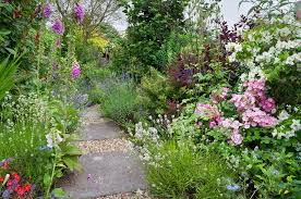 Small Picture Cottage Garden Flower Border in Suffolk UK Shrub Garden shrubs