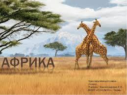 Презентация по окружающему миру на тему Африка класс  слайда 1 Урок окружающего мира 4 класс Учитель Красильникова Е В МАОУ СОШ №