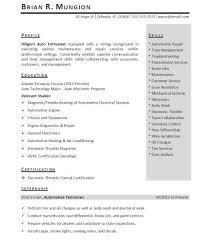 Internshipesume Template Download Free Intern Pdf Stiberaesumes