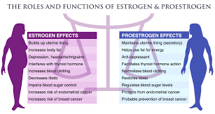 Menopause Hormone Levels Chart Estrogen Level Chart Yahoo Image Search Results Coconut