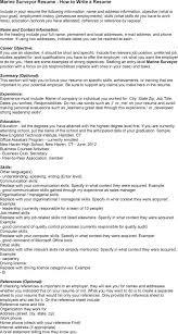 Marine Surveyor Resume