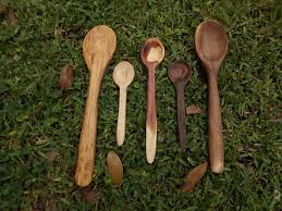 picture of spoon carving for beginners