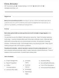 Sample Functional Resume Format Monster Resume Samples From Resume