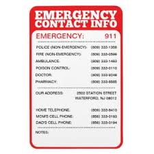 template for emergency contact information 5 emergency contact list templates word templates