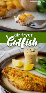 This easy air fryer catfish recipe lets ...