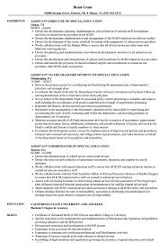 Sample Resume With Sabbatical Special Education Assistant Resume Samples Velvet Jobs 23