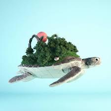 #<b>turtle</b> #cinema #c4d #cinema4d #octane #render #octanerender ...