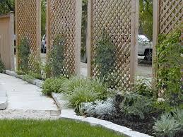 elegant bamboo screen outdoor