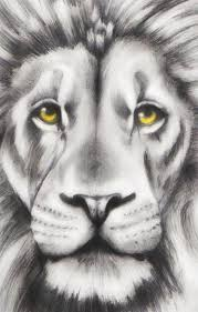 realistic lion face drawing. Fine Drawing Lion Head By RiverSpirit456  To Realistic Face Drawing L