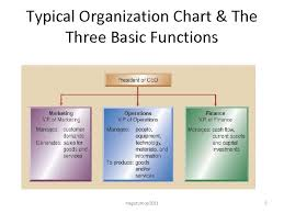 Typical Organizational Chart For Operations Management Dom 511 Operations Management Practice Magutu Obara Peterson S