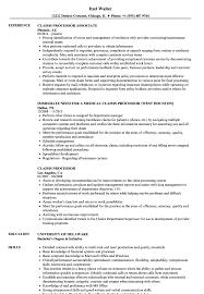 Claims Processor Sample Resume Claims Processor Resume Samples Velvet Jobs 1