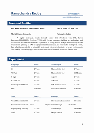 Two Years Experience Resume Resume Work Template