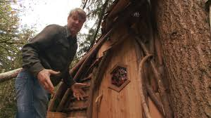 Take a Tour of a Beehive Inspired Treehouse Treehouse Masters